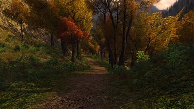 Woodland path in west Rivendell