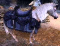 Image of Steed of Winter Winds