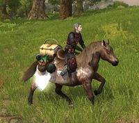Image of Picnic Steed