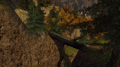 Fallen log bridge in western Rivendell Valley