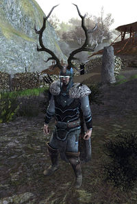 Image of The Huntsman