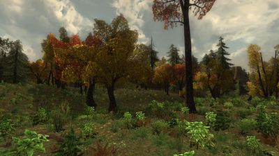 The autumnal forests are a pleasant contrast to the threats in the area
