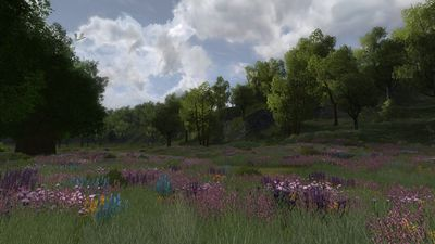 Another view of the meadows within the vales