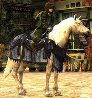 Image of Steed of Winter Winds Pony