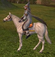 Image of Grey Horse