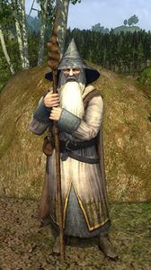 Gandalf (LOTRO Anniversary - at Methel-stage).jpg