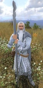 Gandalf (the Wold - Session play).jpg