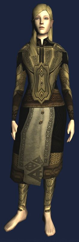 Heavy Chestplate of the Grey Mountain Elite (front).jpg