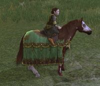 Image of Farmers Feast Pony