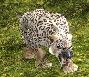 Spotted Sabercat appearance.jpg