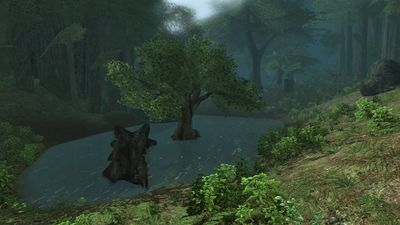 Another angle of the Creaking Vale